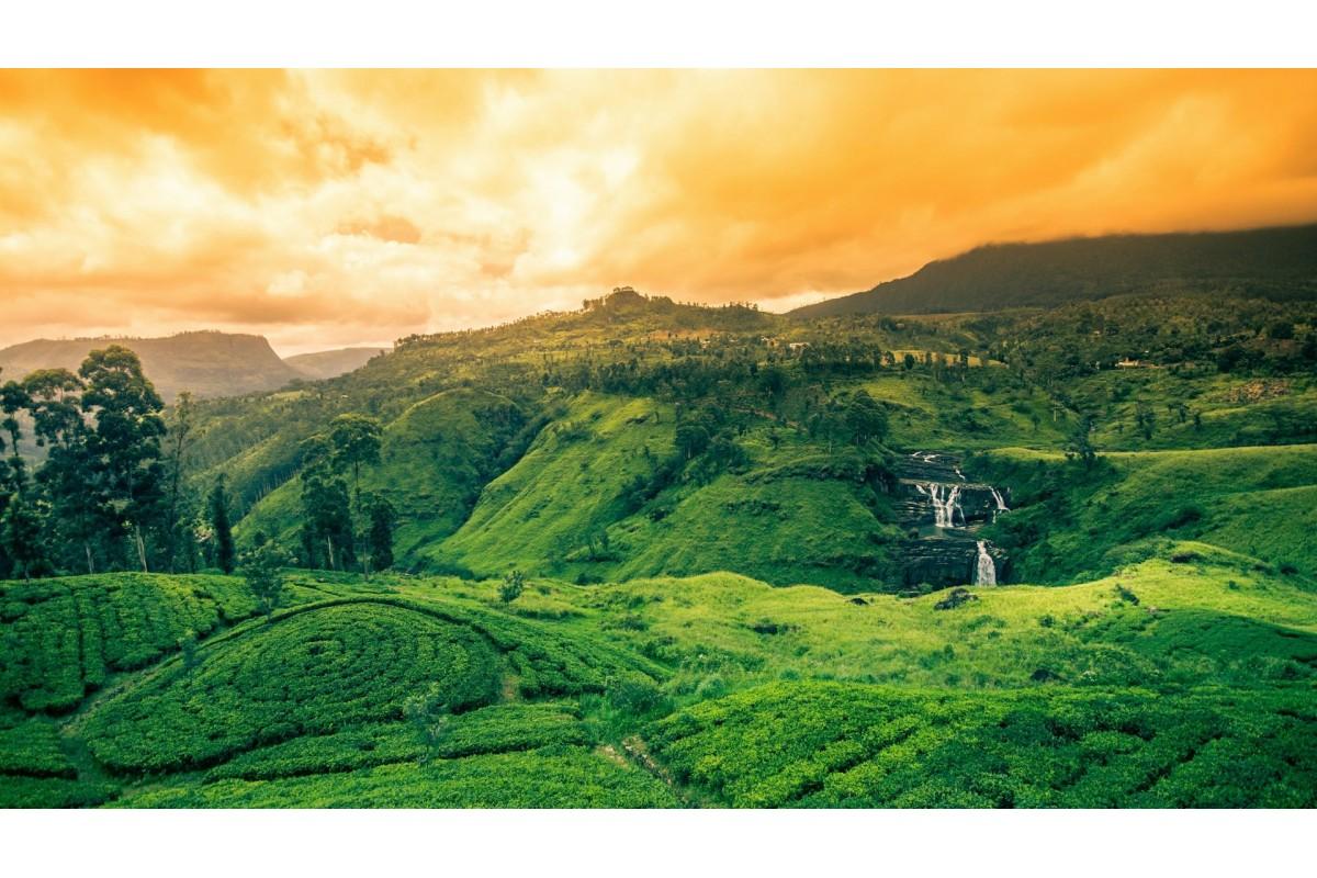 HE Sri Lanka (7)